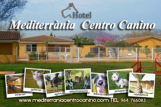 Mediterrània Centro Canino